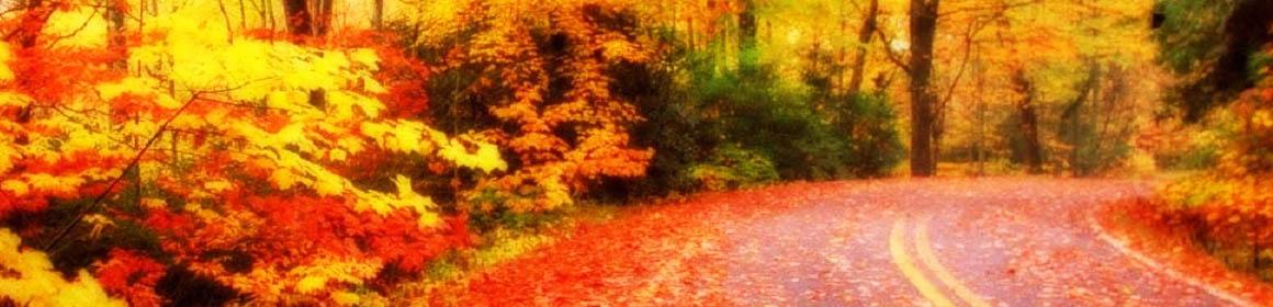 Vackra hösten